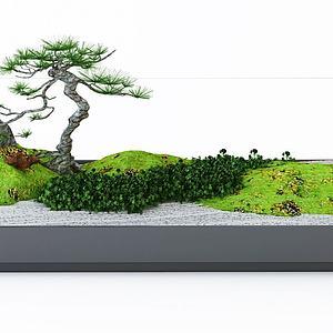 植物盆景园林小景模型