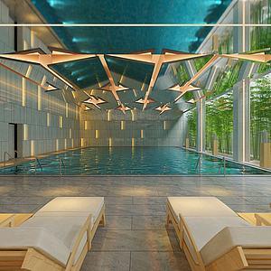 现代娱乐会所游泳馆模型3d模型