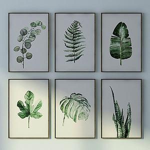 绿色植物?#19968;?#32452;合模型