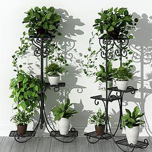 美式植物架模型