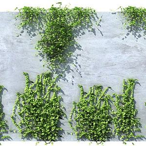 藤蔓模型3d模型