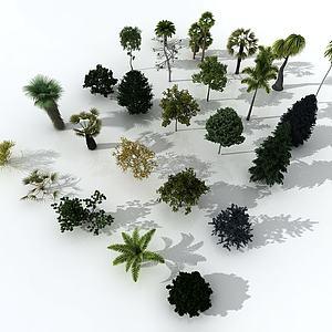 樹木合集模型3d模型