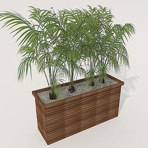 花箱植物模型3d模型