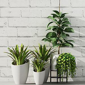 現代園林綠植3d模型