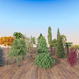 現代室外景觀樹木組合3d模型