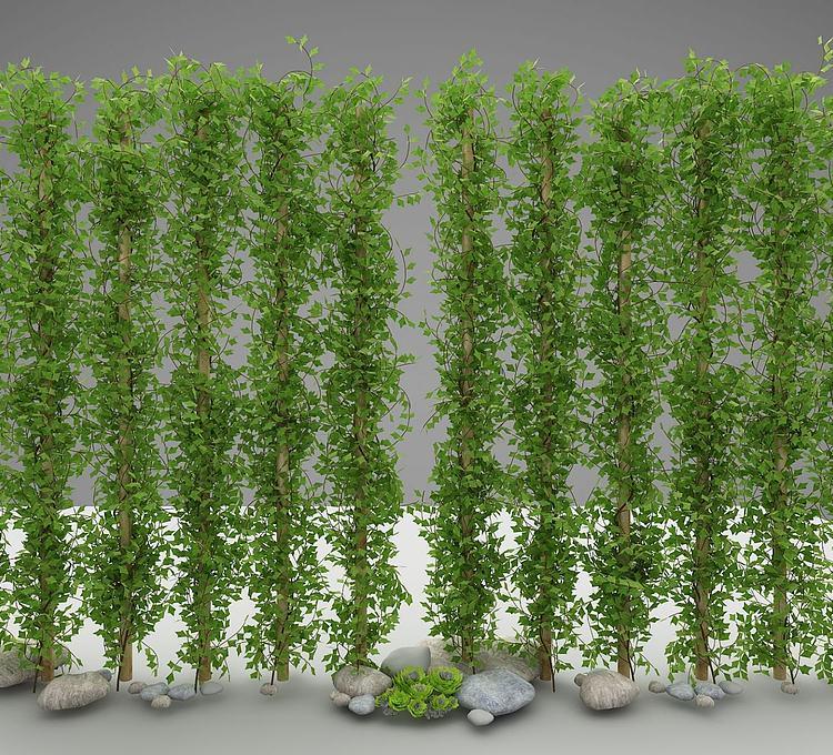 现代风格绿植
