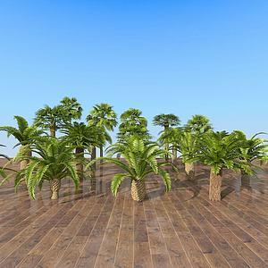 現代室外熱帶樹木組合3d模型