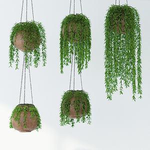 現代綠植吊籃植物3d模型