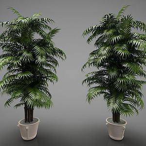3d<font class='myIsRed'>新中式</font>風格的植物模型