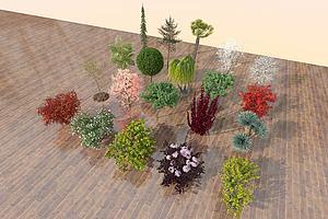 植物盆栽模型模型