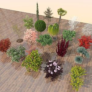植物盆栽3d模型