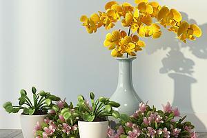 现代花卉绿植室内摆件模型模型