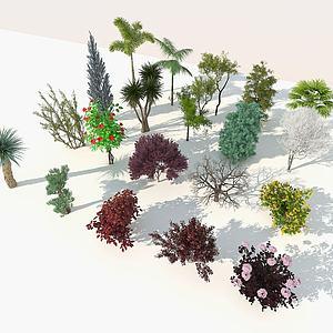 樹木9-雙數3d模型