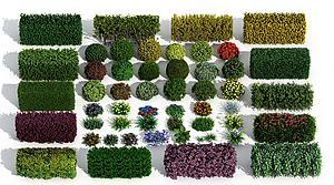 现代灌木模型3d模型