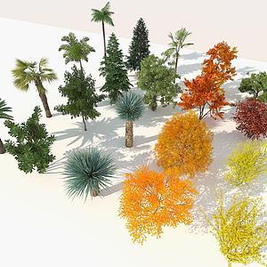 现代室外精品树木组合3d模型