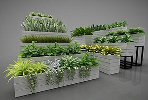 植物盆栽擺件模型3d模型