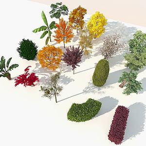 现代室外20棵精品树木组合3d模型