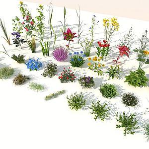 花草組合3d模型