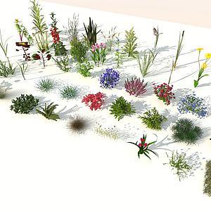 現代室外花草組合3d模型