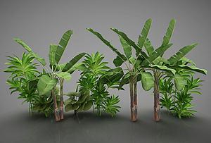 現代風格植物模型3d模型