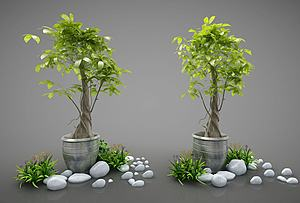 现代风格花盆模型3d模型
