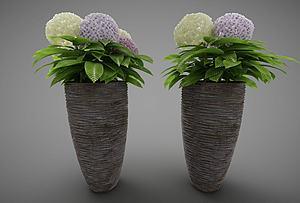 裝飾花盆模型3d模型