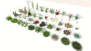 现代室外50棵精品花草模型3d模型