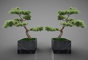 植物模型3d模型