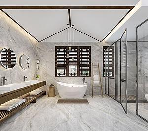 衛生淋浴間模型3d模型