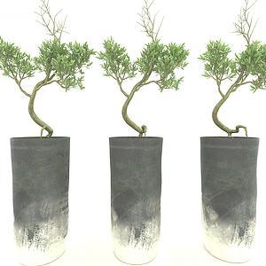現代風格植物3d模型