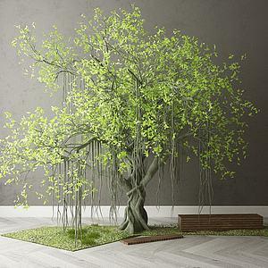 景觀樹木模型3d模型