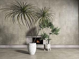 現代盆栽盆景植物模型3d模型