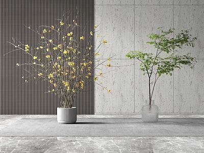 現代盆栽景觀模型3d模型