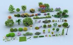 景觀樹組合3D模型