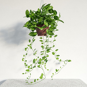 現代吊籃綠植盆栽模型