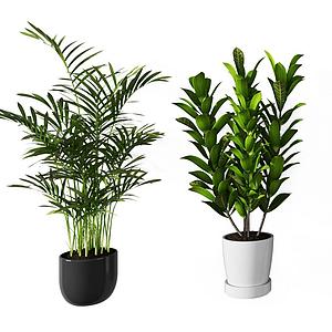 現代植物盆栽組合模型