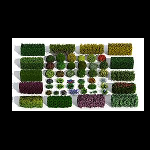 3d現代灌木模型