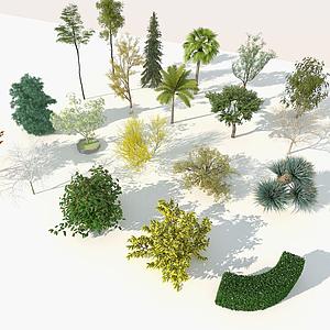園林樹木模型