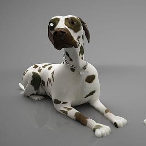 3d动物狗模型