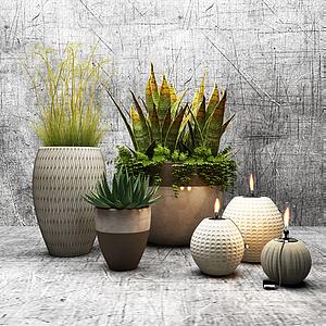 3d花草植物<font class='myIsRed'>盆栽</font>綠植模型