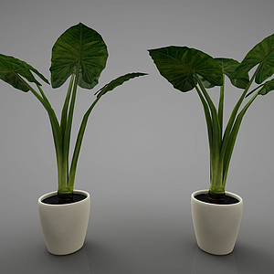 3d<font class='myIsRed'>新中式</font>风格的植物模型