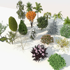 園林樹木組合模型