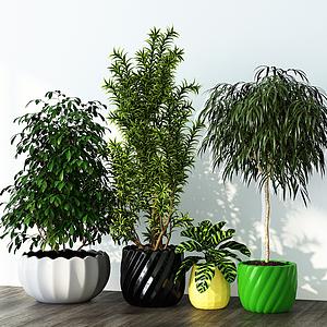 現代綠植盆栽組合模型