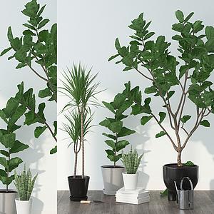 3d現代盆栽組合模型