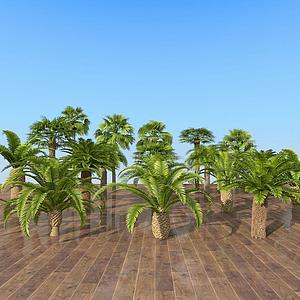 現代室外熱帶樹木組合模型