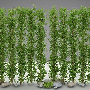 現代風格綠植模型