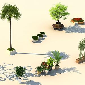 街景植物模型