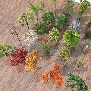 現代室外樹木組合模型