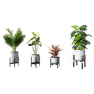3d現代植物<font class='myIsRed'>盆栽</font>組合模型