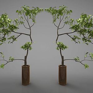 新中式風格盆栽模型